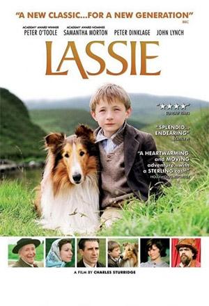 คลิก ดูรายละเอียด Lassie