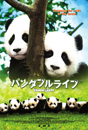 คลิก ดูรายละเอียด Panda Diary