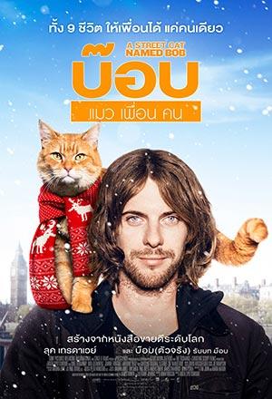 คลิก ดูรายละเอียด A Street Cat Named Bob
