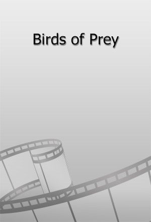 คลิก ดูรายละเอียด Birds of Prey