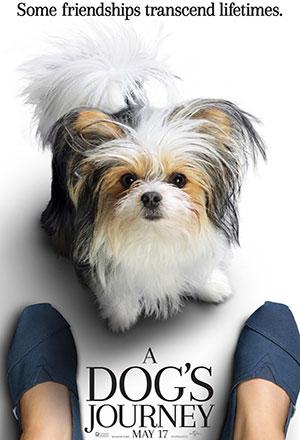 คลิก ดูรายละเอียด A Dog's Journey