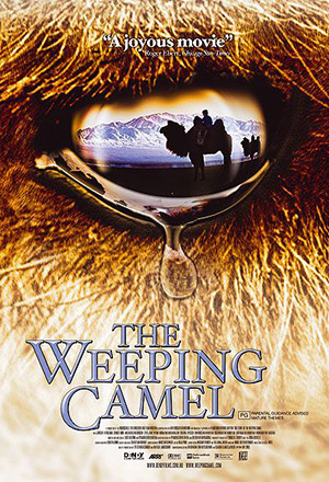 คลิก ดูรายละเอียด The Story of the Weeping Camel